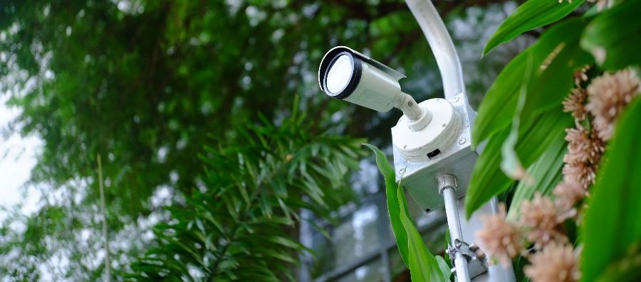 Security Cameras Do More Than Secure Your Home